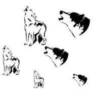 Createx Mylar stencil. Coyote 262502